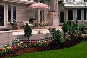 Qu plantas elegir para tener flores todo el a o - Plantas exterior todo el ano ...