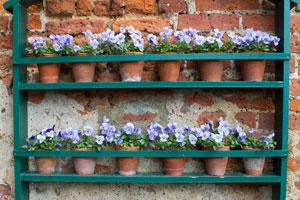 Plantas y flores decoraci n en el hogar pag 1 - Como hacer maceteros colgantes ...