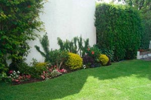 C mo dise ar tu jard n de acuerdo al clima - Disenar mi jardin ...